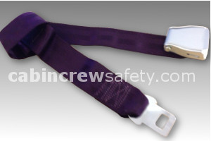 2010-5-011-1312 - AMSAFE Passenger Extension Belt - Purple